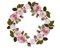 Στεφάνι των ρόδινων τριαντάφυλλων στο άσπρο υπόβαθρο διανυσματική απεικόνιση