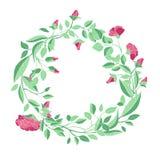 Στεφάνι των τριαντάφυλλων και των κλάδων σε ένα άσπρο υπόβαθρο απεικόνιση αποθεμάτων