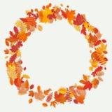 Στεφάνι φιαγμένο από λουλούδια και φύλλα φθινοπώρου στο ελαφρύ υπόβαθρο η σύνθεση κεριών φθινοπώρου μήλων ξηρά βγάζει φύλλα vase  απεικόνιση αποθεμάτων