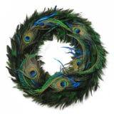 στεφάνι φτερών peacock Στοκ Εικόνες