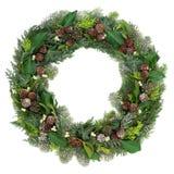 Στεφάνι χειμώνα και Χριστουγέννων Στοκ εικόνα με δικαίωμα ελεύθερης χρήσης