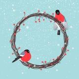 Στεφάνι Χριστουγέννων με Bullfinches Στοκ Εικόνες