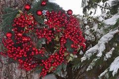 Στεφάνι Χριστουγέννων στη φύση στοκ εικόνες