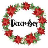 Στεφάνι Χριστουγέννων του κόκκινων poinsettia και των φύλλων η διακοσμητική εικόνα απεικόνισης πετάγματος ραμφών το κομμάτι εγγρά Στοκ φωτογραφία με δικαίωμα ελεύθερης χρήσης