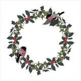 Στεφάνι Bullfinches και Χριστουγέννων της Holly και του κισσού διανυσματική απεικόνιση