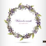 Στεφάνι Watercolor με τα λουλούδια, το φύλλωμα και τον κλάδο Στοκ Φωτογραφίες