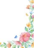 Στεφάνι Watercolor των ζωηρόχρωμων λουλουδιών Στοκ Εικόνες