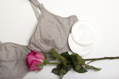 Στηθόδεσμος περιποίησης για τις μητέρες και τις θηλές πυριτίου moms στηθόδεσμος με το νέο μίας χρήσης μαξιλάρι στηθών Αποτρέπει τ Στοκ Φωτογραφίες