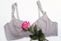 Στηθόδεσμος περιποίησης για τις μητέρες και τις θηλές πυριτίου moms στηθόδεσμος με το νέο μίας χρήσης μαξιλάρι στηθών Αποτρέπει τ στοκ φωτογραφία