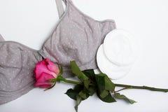 Στηθόδεσμος περιποίησης για τις μητέρες moms στηθόδεσμος με το νέο μίας χρήσης μαξιλάρι στηθών Αποτρέπει τη ροή του γάλακτος στα  στοκ εικόνες με δικαίωμα ελεύθερης χρήσης