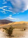 Στην άμμο και το Stone στοκ εικόνα με δικαίωμα ελεύθερης χρήσης