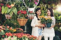 Στην αγορά λουλουδιών Στοκ φωτογραφία με δικαίωμα ελεύθερης χρήσης