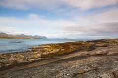 Στην ακτή στη Νορβηγία στοκ εικόνες