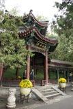 Στην Ασία, κινέζικα, Πεκίνο, το θερινό παλάτι, περίπτερο Στοκ φωτογραφίες με δικαίωμα ελεύθερης χρήσης