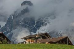 Στην κοιλάδα Grindelwald, Ελβετία Στοκ φωτογραφίες με δικαίωμα ελεύθερης χρήσης