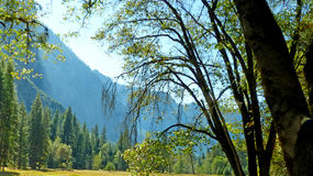 Στην κοιλάδα Yosemite σε Καλιφόρνια Στοκ εικόνες με δικαίωμα ελεύθερης χρήσης