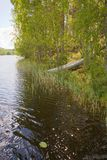 στην ξηρά rowboat προσαραγμένος Στοκ φωτογραφία με δικαίωμα ελεύθερης χρήσης