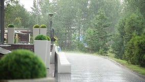 Στην οδό βρέχει απόθεμα βίντεο