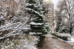 Στην οδό του χειμώνα Sloviansk Ουκρανία στοκ φωτογραφίες