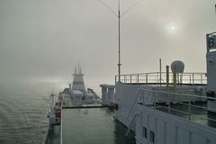 Στην ομίχλη Στοκ Εικόνες