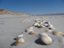 Στην παραλία Blavand/της Δανίας στοκ εικόνα με δικαίωμα ελεύθερης χρήσης