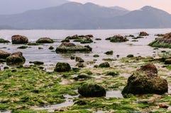 Ακτή Shenzhen στοκ φωτογραφία