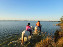 Στην πλάτη αλόγου στην περιοχή Camargue, Γαλλία Στοκ Φωτογραφία