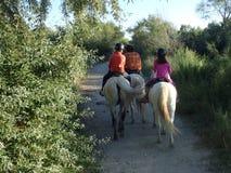 Στην πλάτη αλόγου στην περιοχή Camargue, Γαλλία Στοκ εικόνες με δικαίωμα ελεύθερης χρήσης