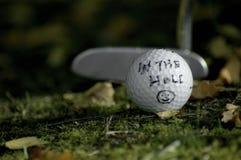 Στην τρύπα. Έννοια γκολφ  Στοκ Φωτογραφίες