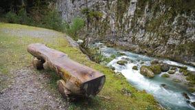 Στηργμένος θέση κοντά στον ποταμό, ο οποίος τρέχει μέσω των βουνών Παλαιός ξύλινος πάγκος σύμφωνα με την άποψη του ποταμού   απόθεμα βίντεο