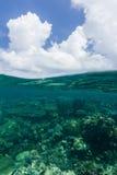 Στη θάλασσα που κολυμπά με αναπνευτήρα με πολύ κοράλλι Στοκ Εικόνα