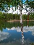 Στη λίμνη στο καλοκαίρι στοκ εικόνες με δικαίωμα ελεύθερης χρήσης