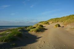 Στη μέση των αμμόλοφων άμμου με τη χλόη παραλιών στη Βόρεια Θάλασσα Στοκ εικόνα με δικαίωμα ελεύθερης χρήσης