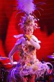 Στη σκηνή σε μια θεαματική επίδειξη του μουσικού πρωθυπουργού θεάτρων Στοκ εικόνα με δικαίωμα ελεύθερης χρήσης