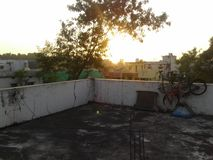 Στη χώρα μας αυτό είναι πολύ όμορφη σκηνή όπως τις πράσινες εγκαταστάσεις και την ηλιοφάνεια στοκ φωτογραφία με δικαίωμα ελεύθερης χρήσης
