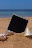 Στιγμιαία φωτογραφία με τα seashels Στοκ Εικόνες