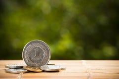 στιλβωτική ουσία νομισμάτων zloty Στοκ εικόνα με δικαίωμα ελεύθερης χρήσης