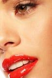 στιλπνό χειλικό κόκκινο στοκ φωτογραφίες με δικαίωμα ελεύθερης χρήσης