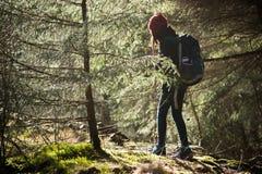 Στις άγρια περιοχές Στοκ εικόνα με δικαίωμα ελεύθερης χρήσης