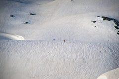 Στις άγρια περιοχές Στοκ εικόνες με δικαίωμα ελεύθερης χρήσης