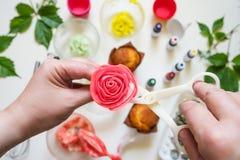 Στις άσπρες φόρμες κέικ υποβάθρου, spatula, corolla, κώνοι για την κρέμα, το κορεατικό buttercream ανθίζει στοκ φωτογραφίες