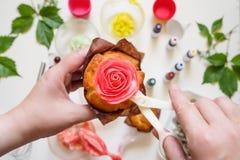 Στις άσπρες φόρμες κέικ υποβάθρου, spatula, corolla, κώνοι για την κρέμα, το κορεατικό buttercream ανθίζει στοκ φωτογραφίες με δικαίωμα ελεύθερης χρήσης