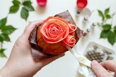 Στις άσπρες φόρμες κέικ υποβάθρου, spatula, corolla, κώνοι για την κρέμα, το κορεατικό buttercream ανθίζει στοκ εικόνες