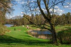 Στις αρχές ηλιόλουστης ημέρας άνοιξη στο πάρκο Στοκ Φωτογραφία
