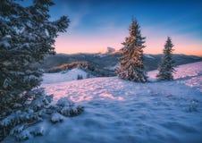 Στις αρχές κρύου πρωινού σε μια κοιλάδα βουνών Στοκ Εικόνα