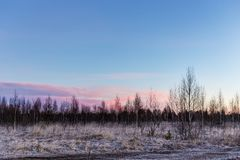 στις αρχές πρωινού παγετού Στοκ Εικόνες