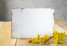 Στις ξύλινες σανίδες, κλάδοι με τα κίτρινα φύλλα, ένα άσπρο φύλλο του εγγράφου έκαψε κατά μήκος των ακρών, τα περιθώρια για το κε στοκ φωτογραφίες με δικαίωμα ελεύθερης χρήσης