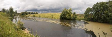 Στις όχθεις του ποταμού, τα δέντρα αυξάνονται Επιπλέον duckweed ποταμών Στοκ εικόνα με δικαίωμα ελεύθερης χρήσης