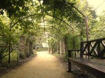 Στοά πάρκων Στοκ Εικόνες