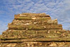 στοίβα ξυλείας Στοκ Φωτογραφίες
